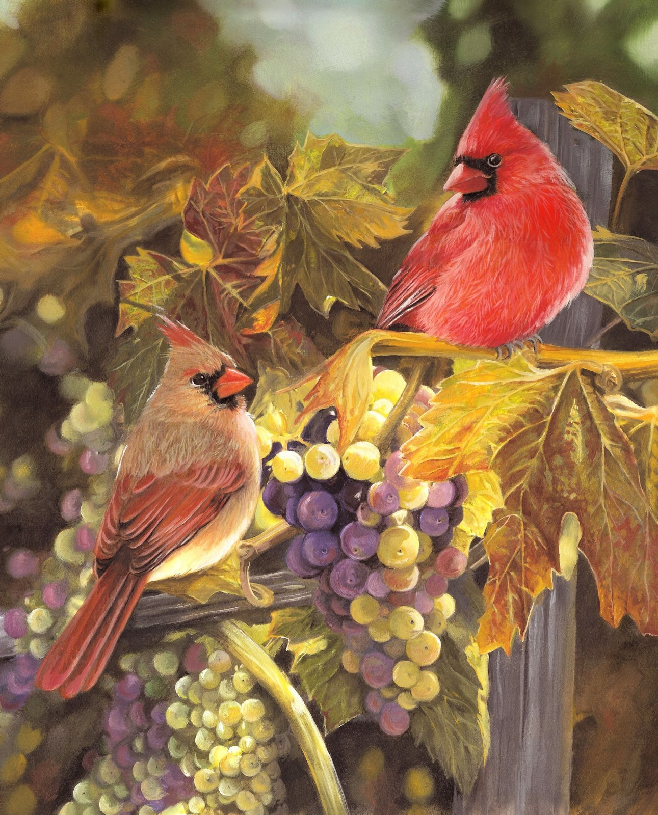 Harvest Time Cardinals 3198 Panel