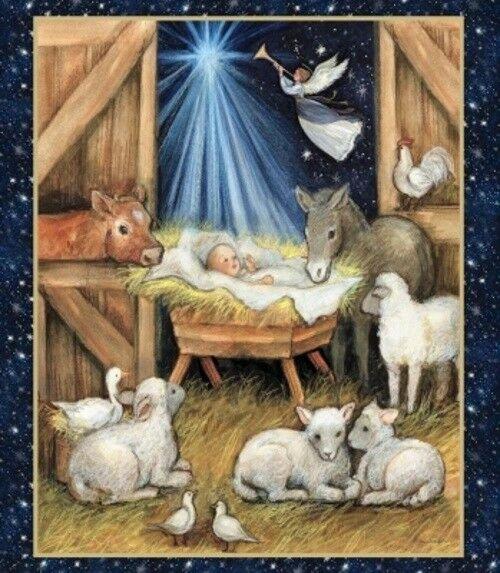 Nativity Baby Animals 66686 Panel