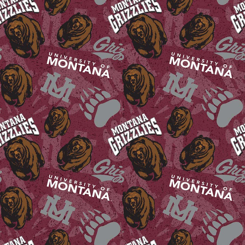 NCAA Montana Grizzlies 1178 Packed Toss