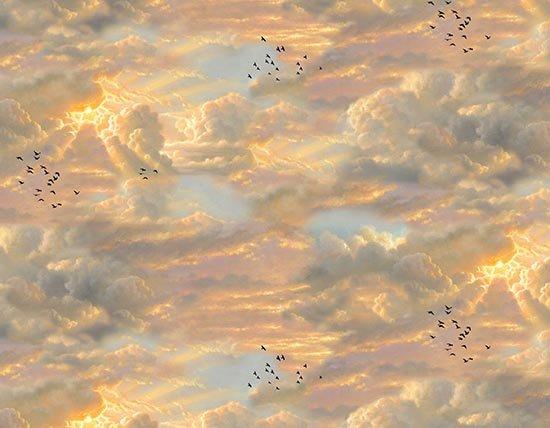 Noah's Ark 9603 Sky