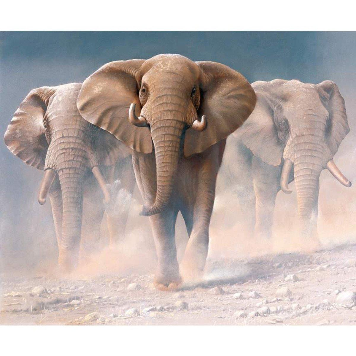 On Safari P10452 Elephant Panel
