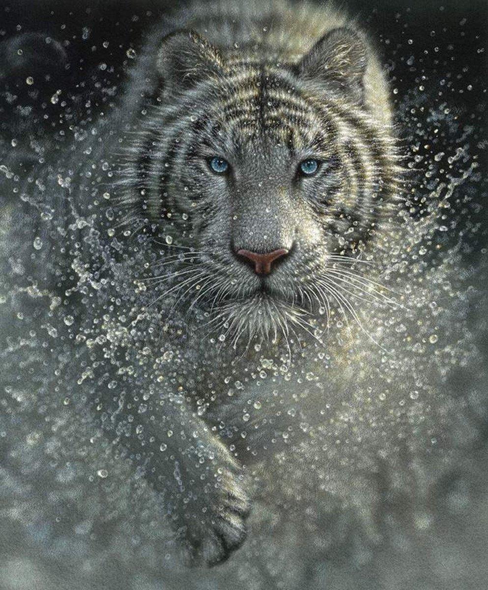On Safari P10453 White Tiger Panel