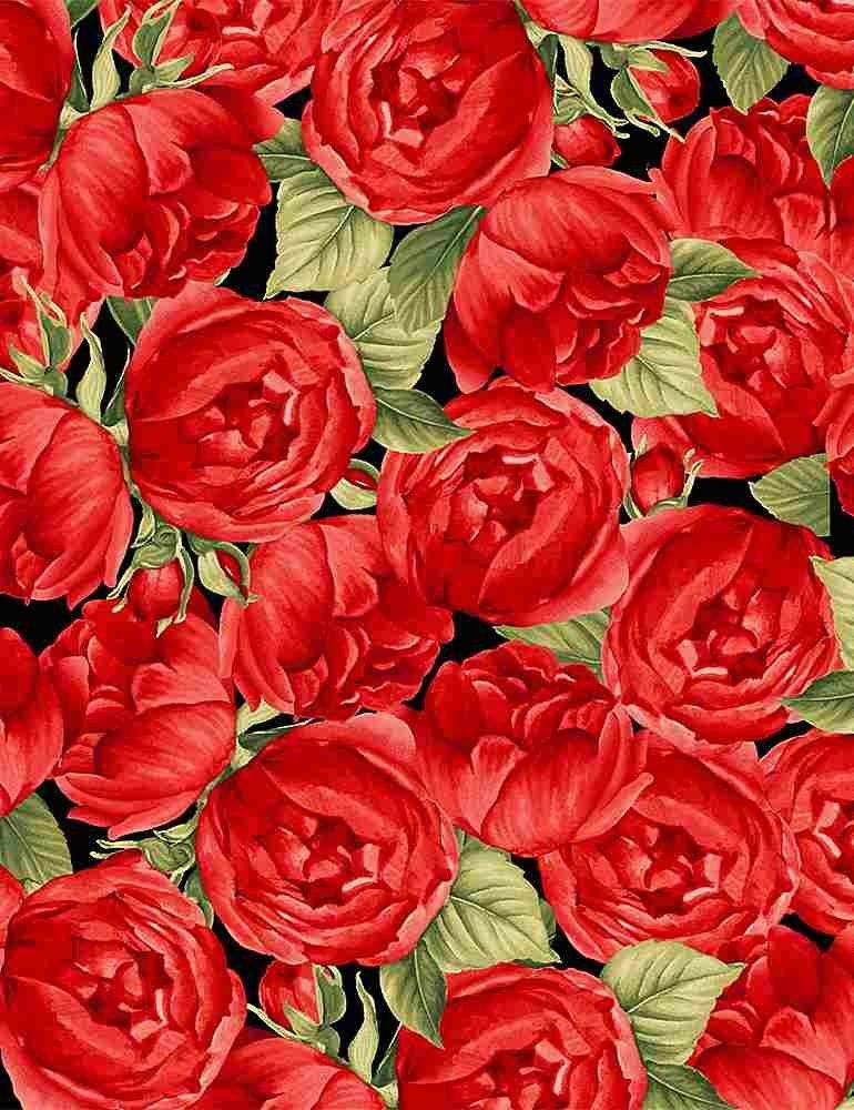 Packed Roses C7973 Black