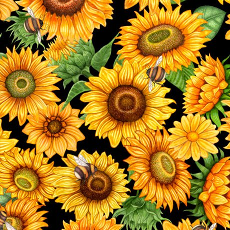 Always Face Sunshine Packed Sunflowers 27844-J Black