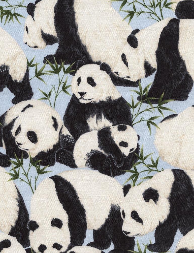 Pandas C4823 Sky