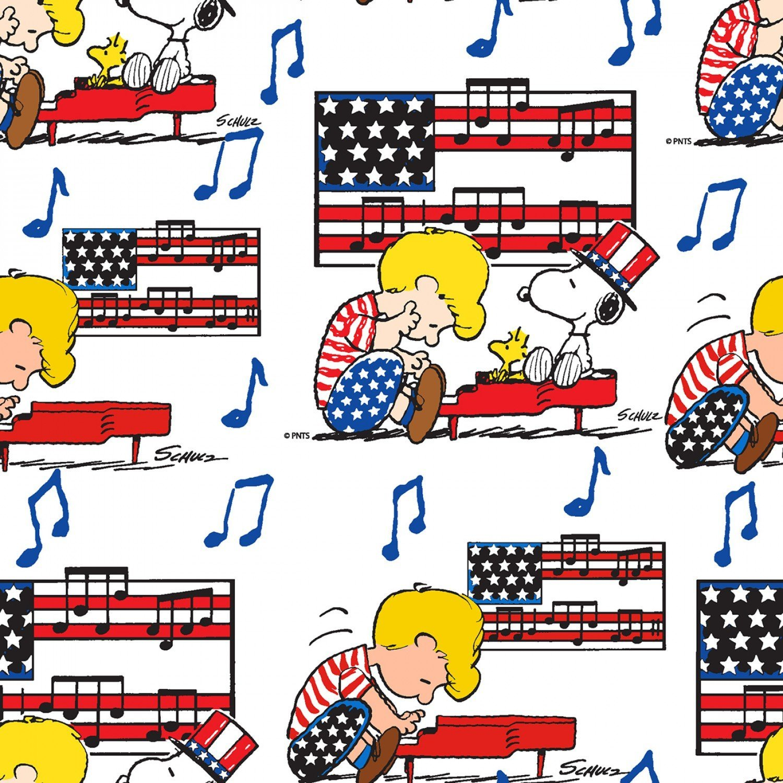 Charlie Brown Peanuts 73989 Linus & Snoopy Americana