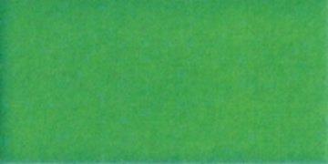 Perma Core Flash Green QE021