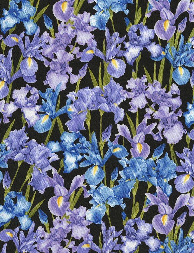 Petal C5382 Iris Black