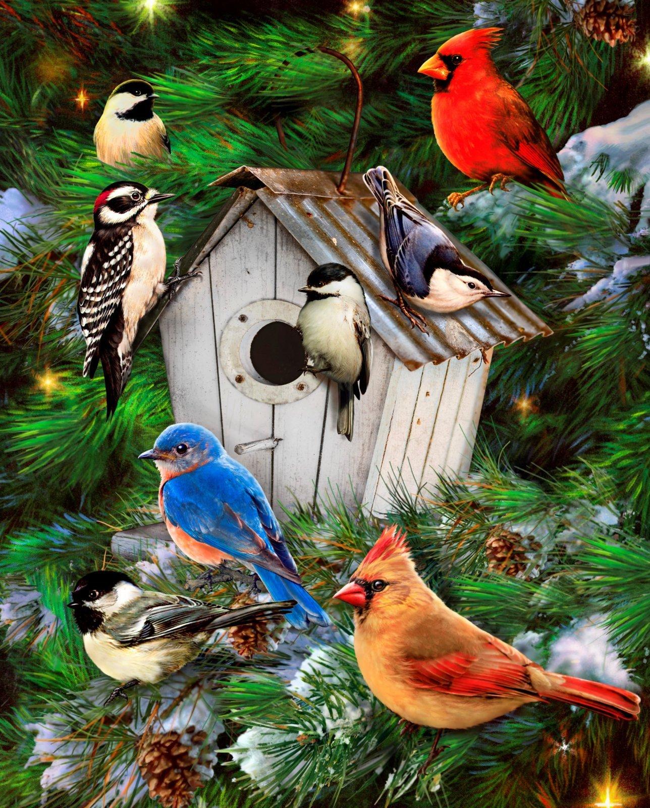Pine Tree Bird House 0027 Panel