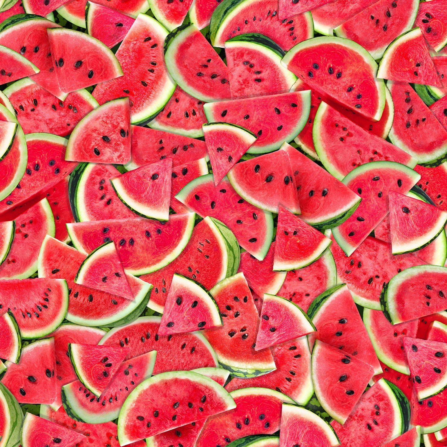 Watermelons C7965 Pink Packed