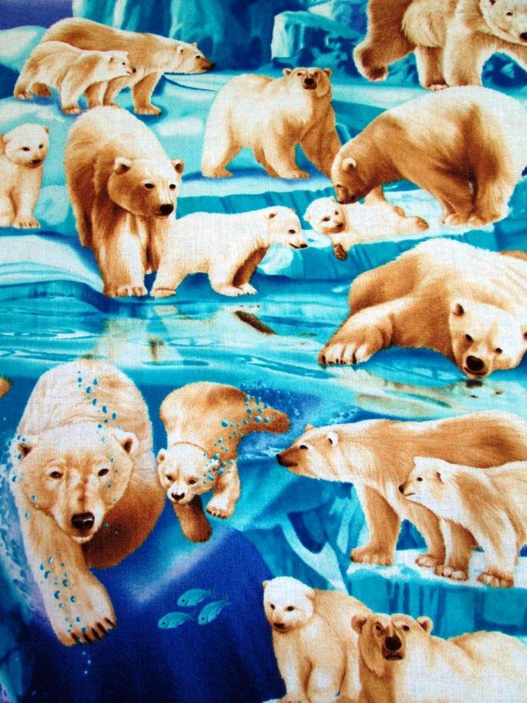 Polar Bears C1825