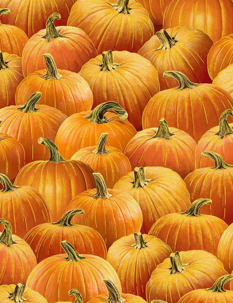 Pumpkin Harvest CM7662