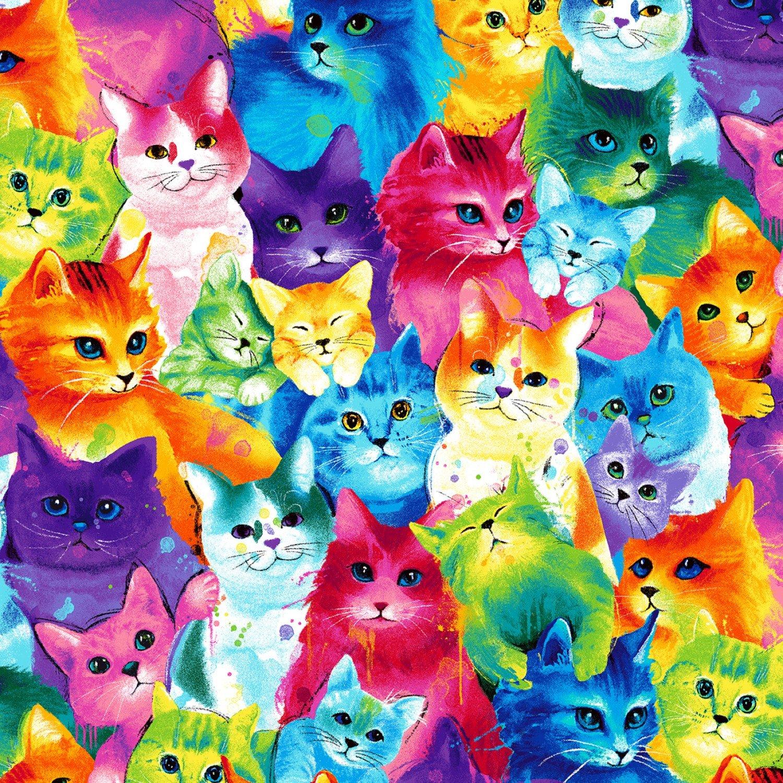 Rainbow Cats C7485 Packed
