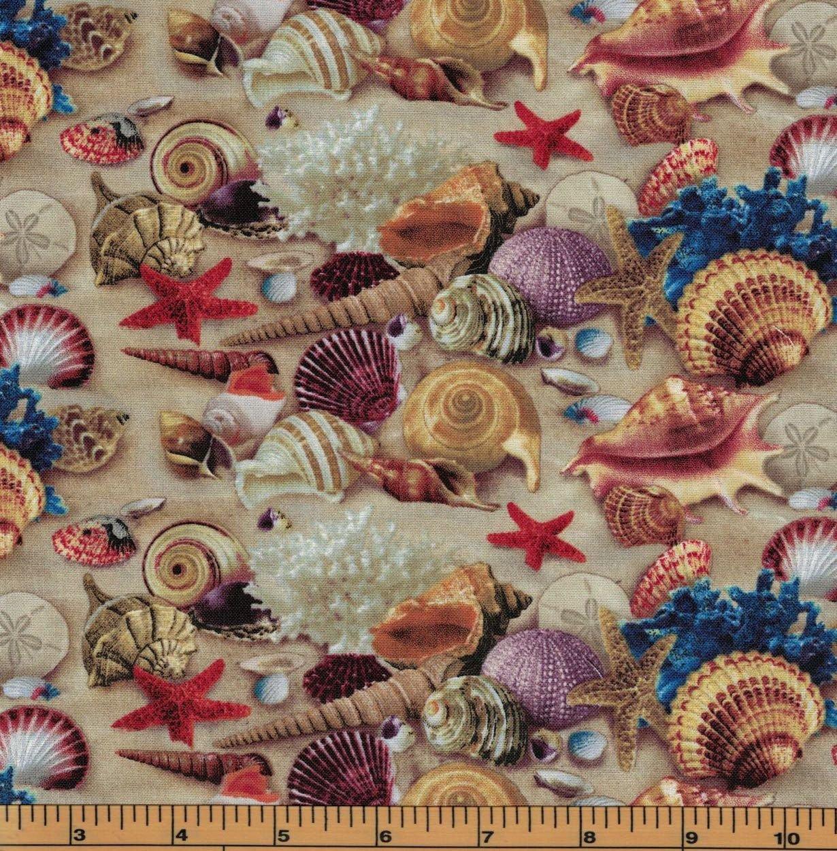 Seashells 278 Sand