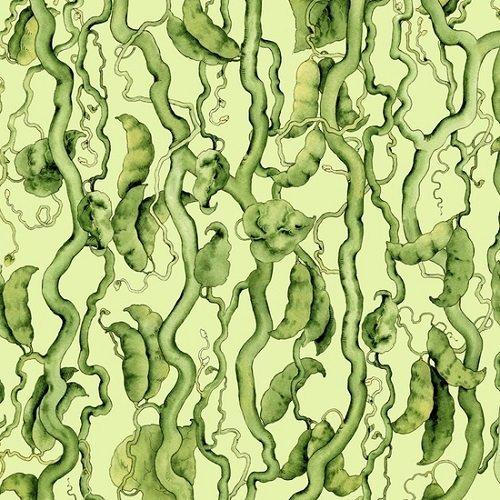 Green Beans 24582-G