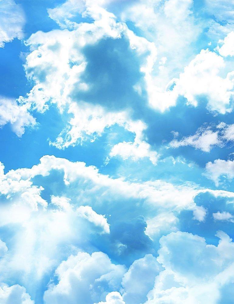 Beach Day C8463 Clouds Blue