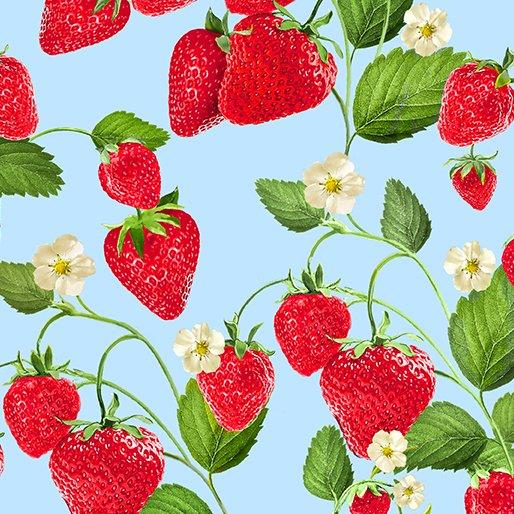 *EOB* Strawberry Patch 9765 Blue - 0.94YD