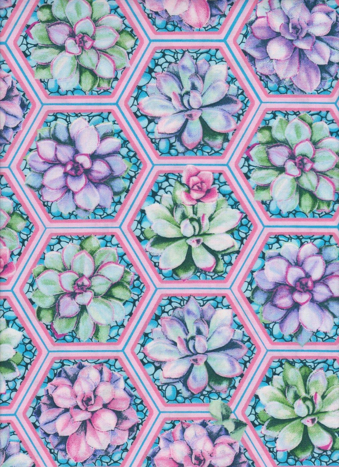 Succulent 16765 Hexagons