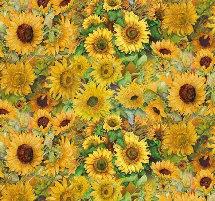 Field of Sunflowers 3395 Packed