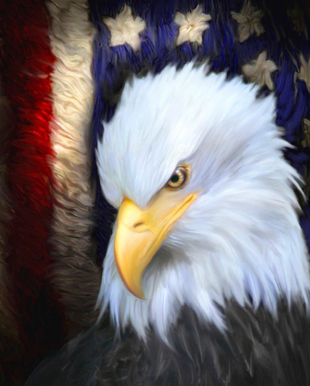 The Patriot Press 3794 Eagle Panel
