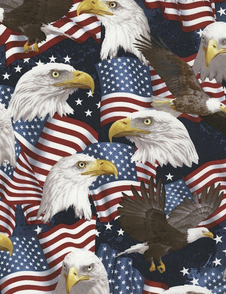 USA C5566 Eagle & Flags