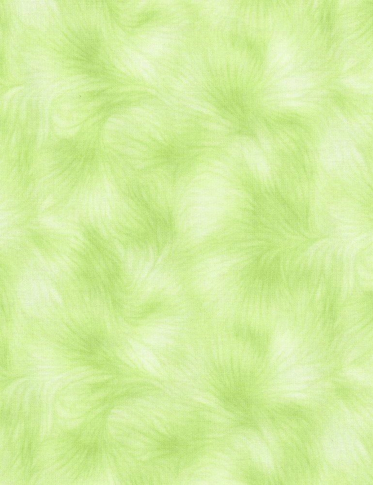 Viola Botanical Texture C4459 Celery