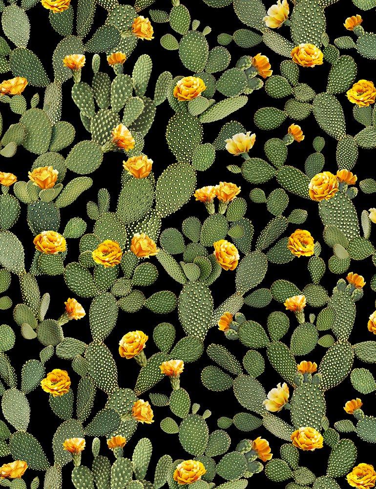 Cactus C6805 Prickly Pear Black