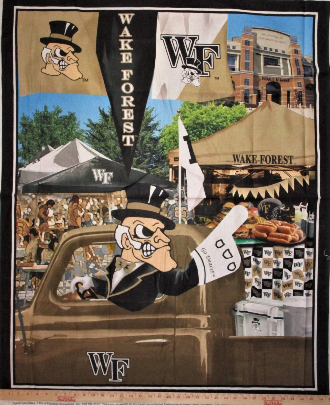 NCAA Wake Forest 1157 Panel Demon Deacons