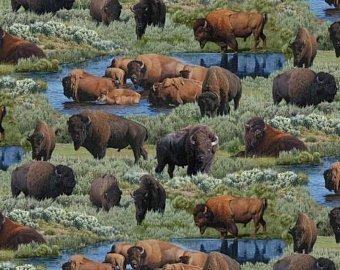Where Buffalo Roam 9701 Green