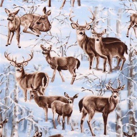 Winter Deer 3597