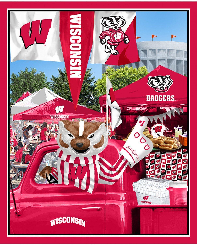 NCAA Wisconsin Badgers 1157 Panel