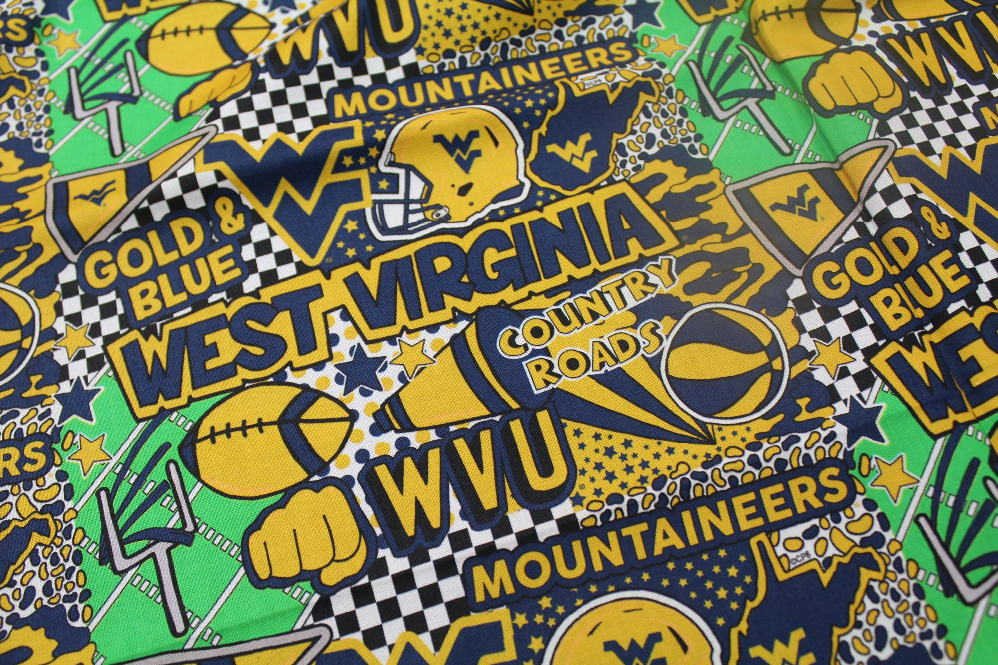 NCAA West Virginia Mountaineers 1165 Pop Art