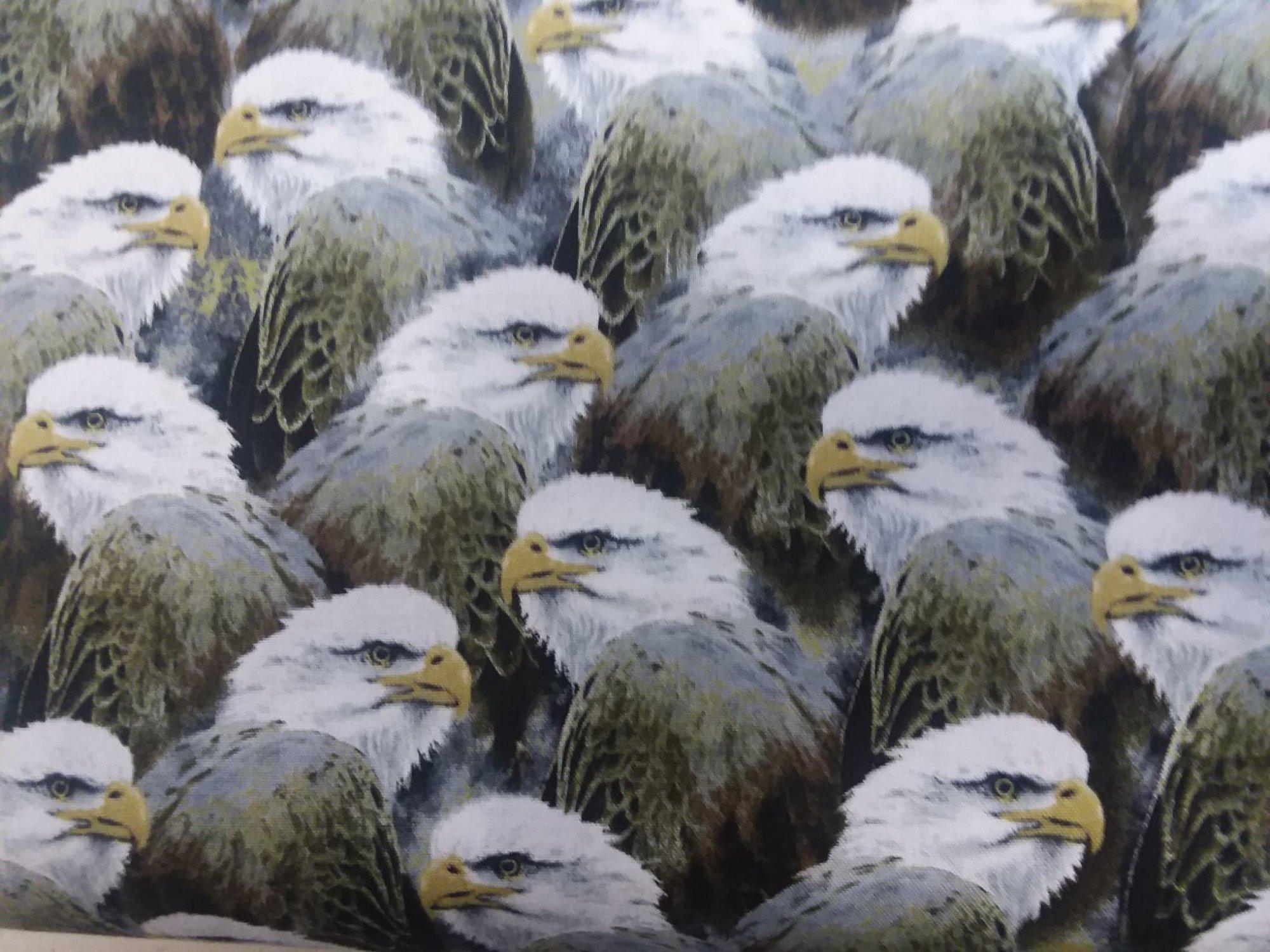 Quilting Treasures Majestic Eagles