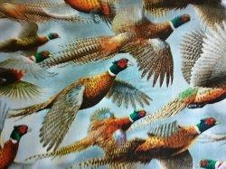 Wild Pheasants -- on blue