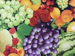 RJR Fabrics Farmers Mixed Fruit