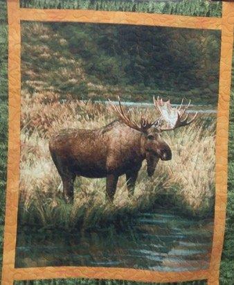 Moose Kit