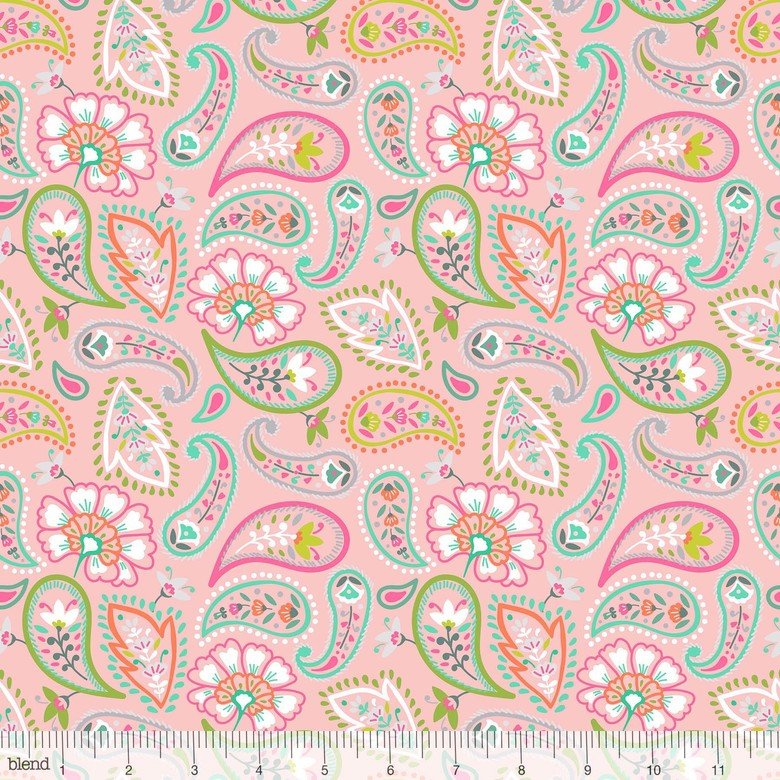 Desert Blooms Spiny Succulents Pink Paisley