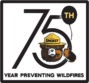 Smokey 75th Year White Patch