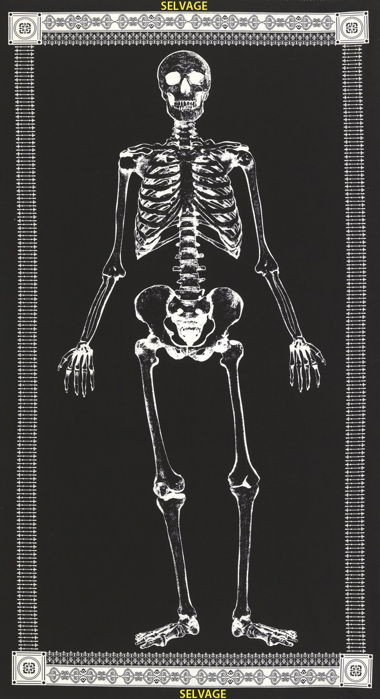 Glow in the Dark Skeleton