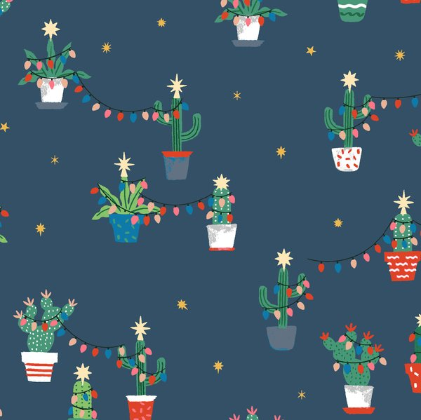 Holiday Cacti