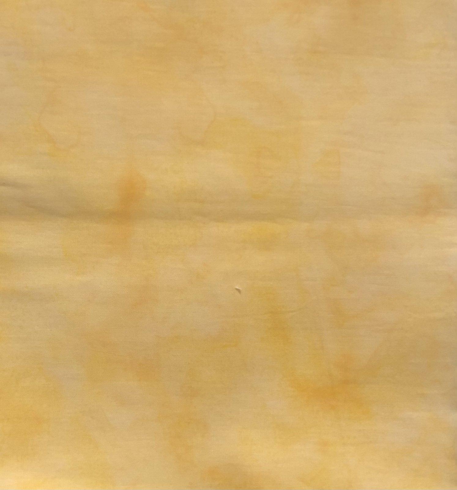 1 yd Remnant Yellow-Orange Blender Batik