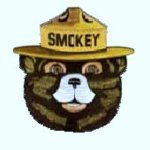 3 inch Smokey Face Patch