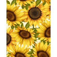 Sunset Blooms Large Sunflowers
