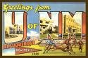 U of New Mexico Large Letter Fabric Postcard 4x6