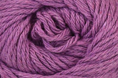Clean Cotton 113 Allium