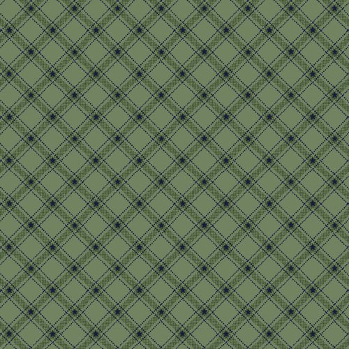 Liberty Star Q-1587-11 Aqua Stars & Ticking Plaid by Kim Diehl