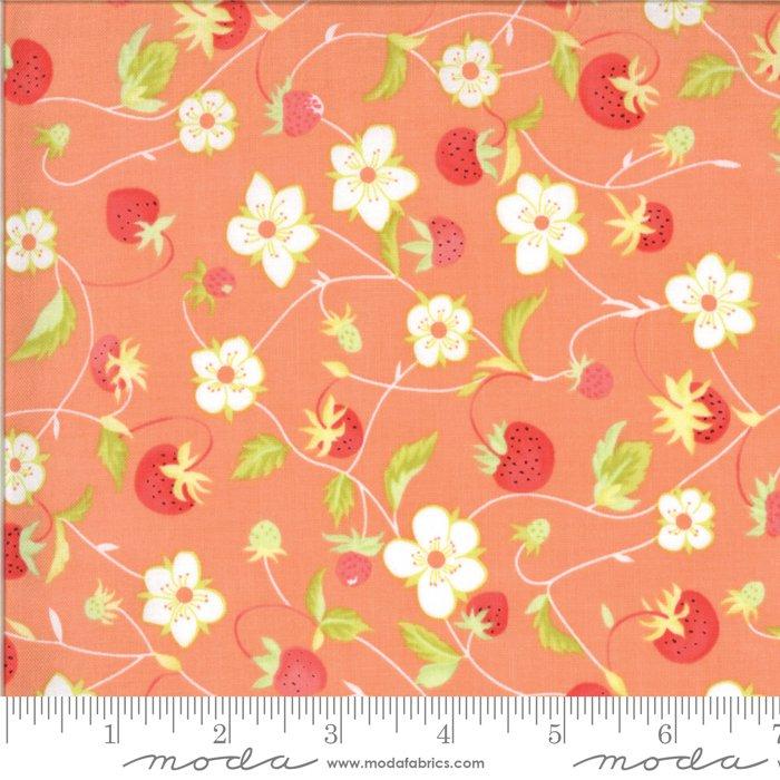 Chantilly 20341-11 Gerbera by Fig Tree for Moda