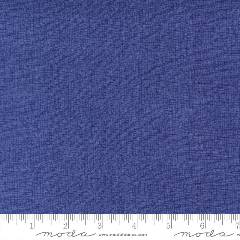 Thatched New 48626-175 Dutch Iris by Robin Pickens for Moda