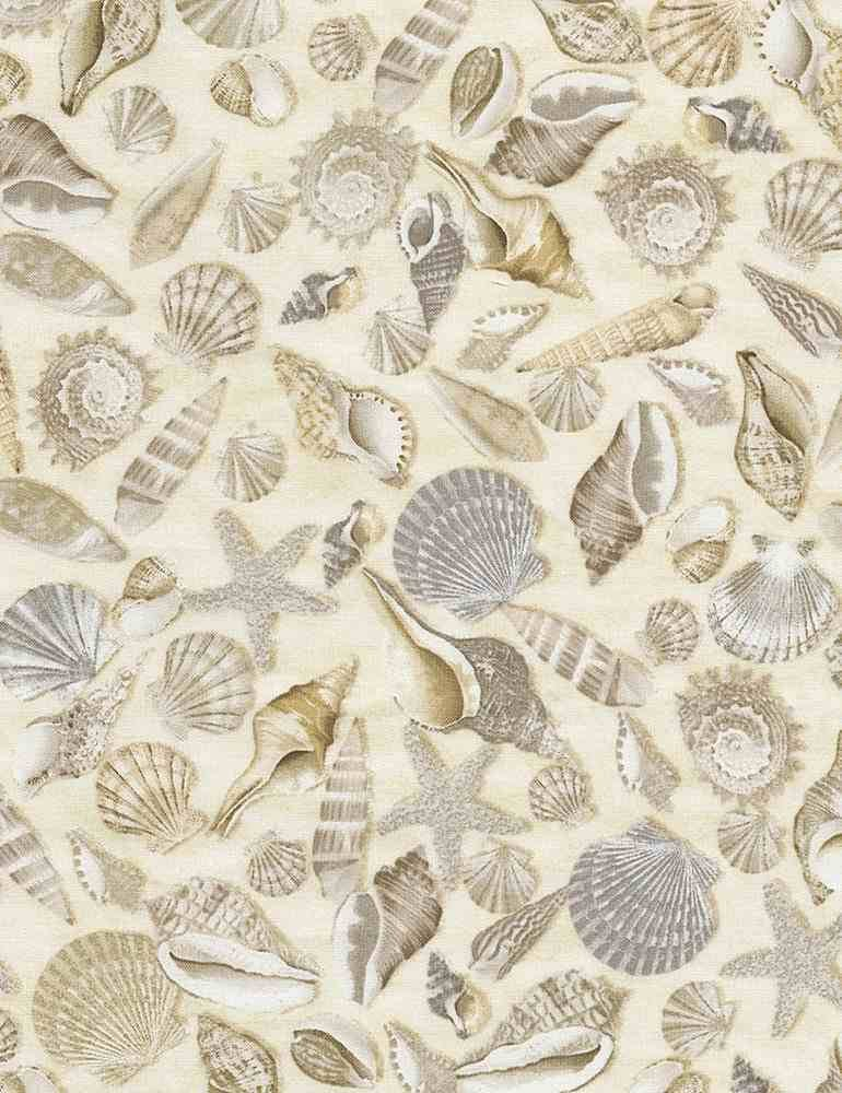 Welcome to the Beach C5353 Shells from Timeless Treasures