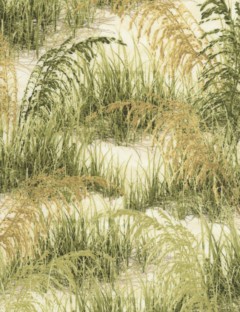 Beach Grass C5354 Timeless Treasures